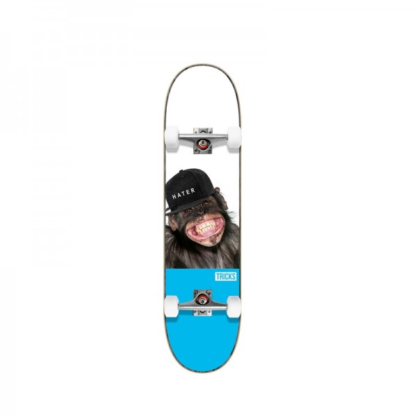 Tricks Hater 7,75'' Skateboard completo