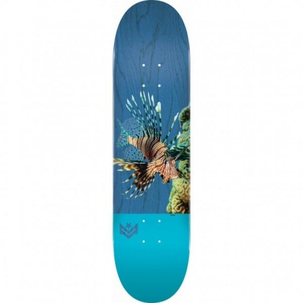 "Mini logo Birch ""16"" 291 K20 poison Lion Fish 7,75'' skateboard completo"