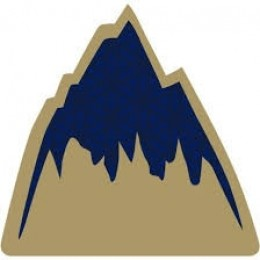 Burton Foam mat mountain logo