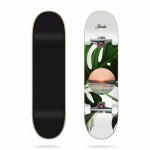 Aloiki Coast 7,6'' Skateboard completo