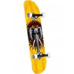 Powel Peralta Valelly Elephant 8'' Skate completo